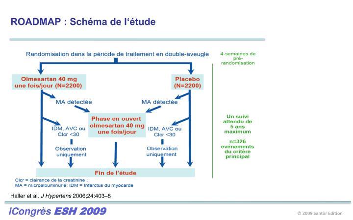 ROADMAP : Schéma de l'étude