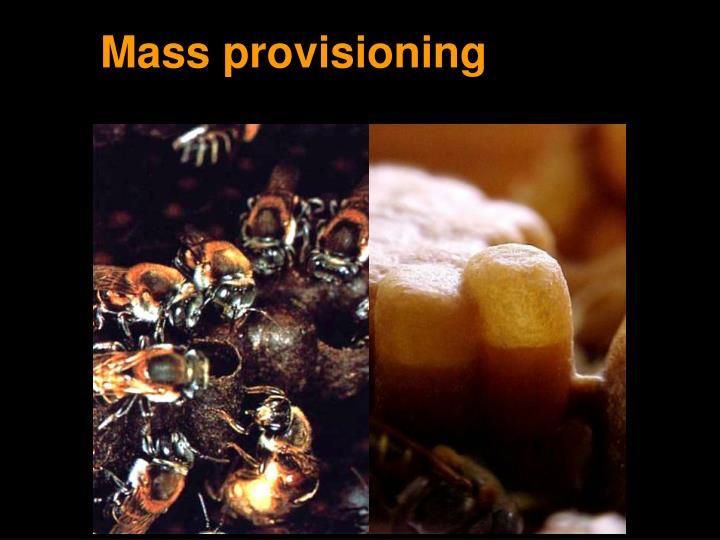 Mass provisioning