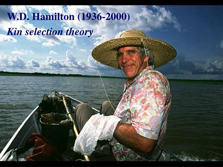W.D. Hamilton (1936-2000)