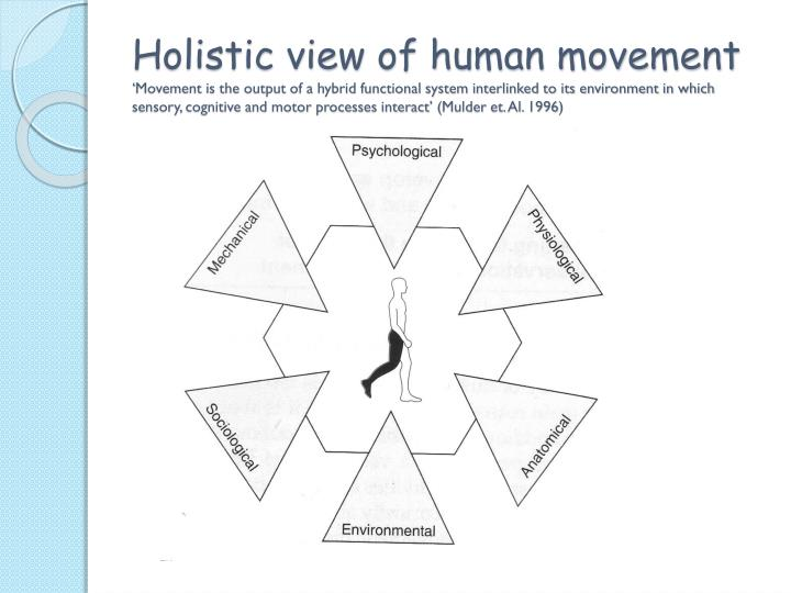 Holistic view of human movement