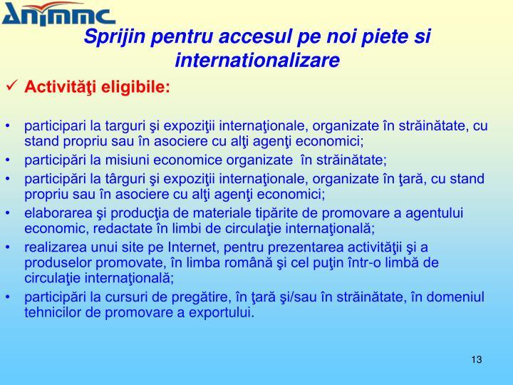 Sprijin pentru accesul pe noi piete si internationalizare