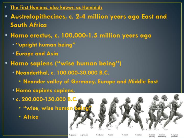 The First Humans, also known as Hominids