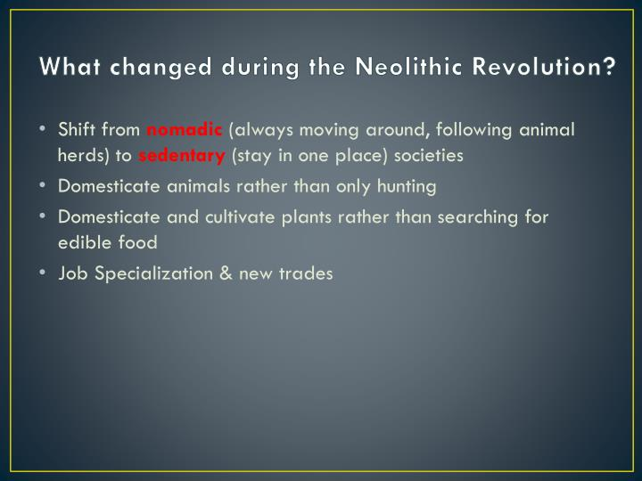 What changed during the Neolithic Revolution?