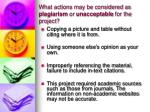 what actions may be considered as plagiarism or unacceptable for the project