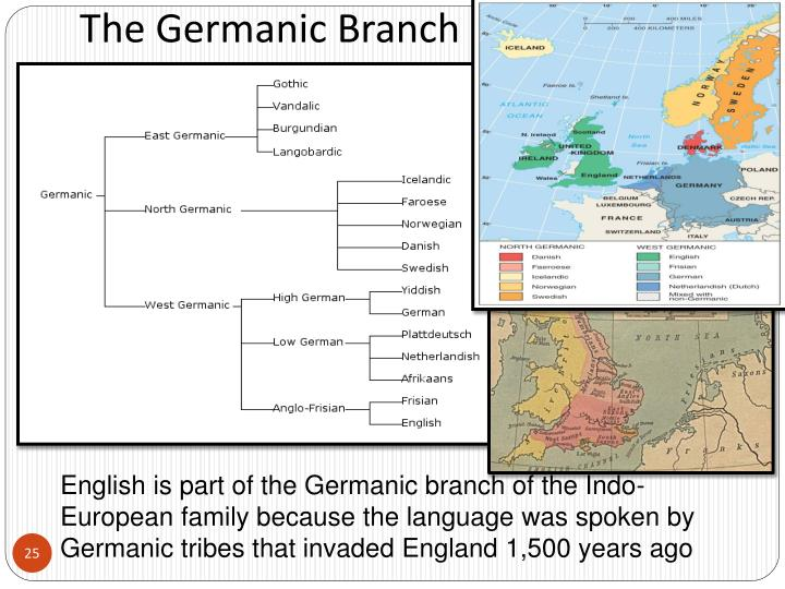 The Germanic Branch