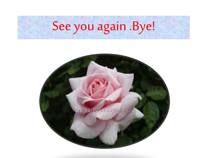 See you again .Bye!
