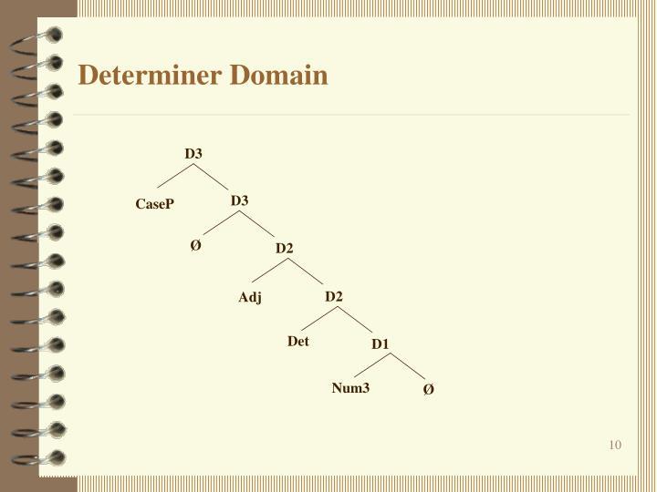 Determiner Domain
