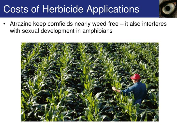 Costs of Herbicide Applications