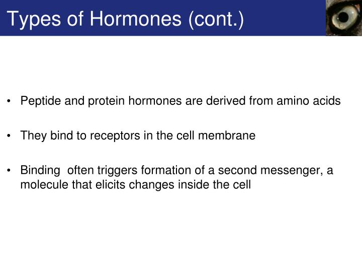 Types of Hormones (cont.)
