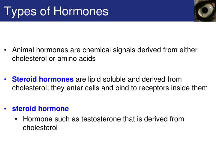 Types of Hormones