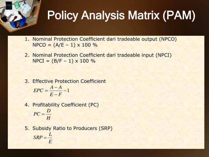 Policy Analysis Matrix (PAM