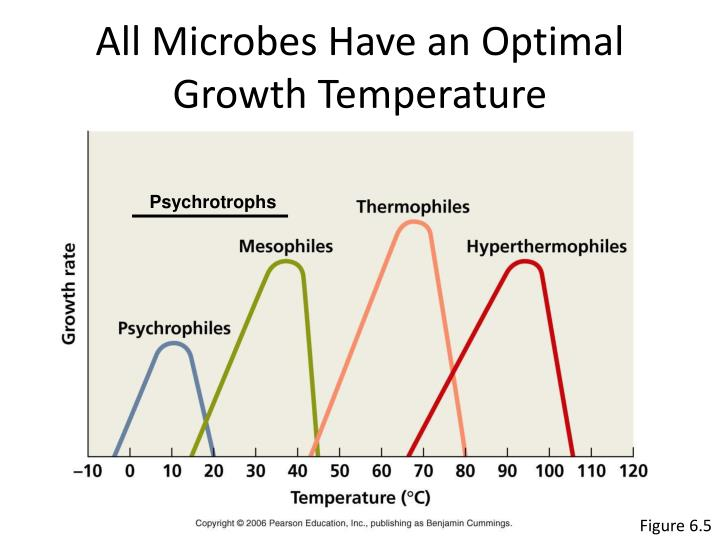 All Microbes Have an Optimal Growth Temperature
