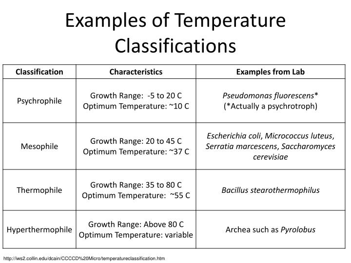 Examples of Temperature Classifications