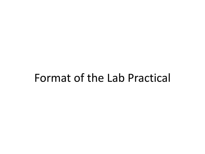 Format of the Lab Practical