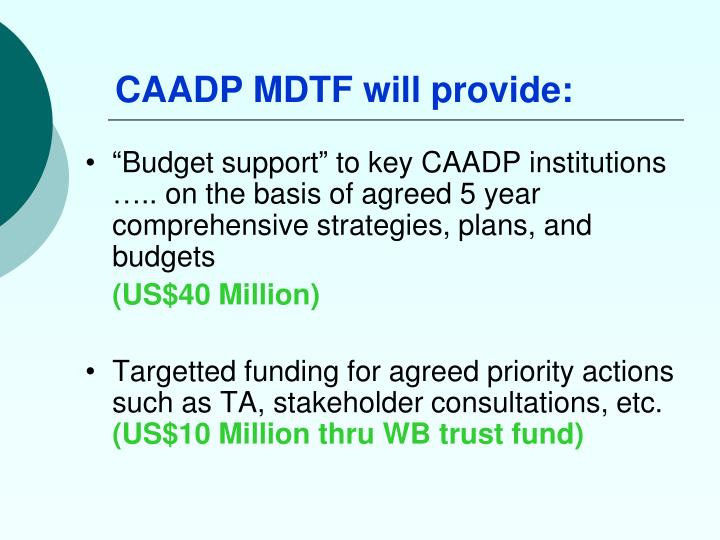 CAADP MDTF will provide: