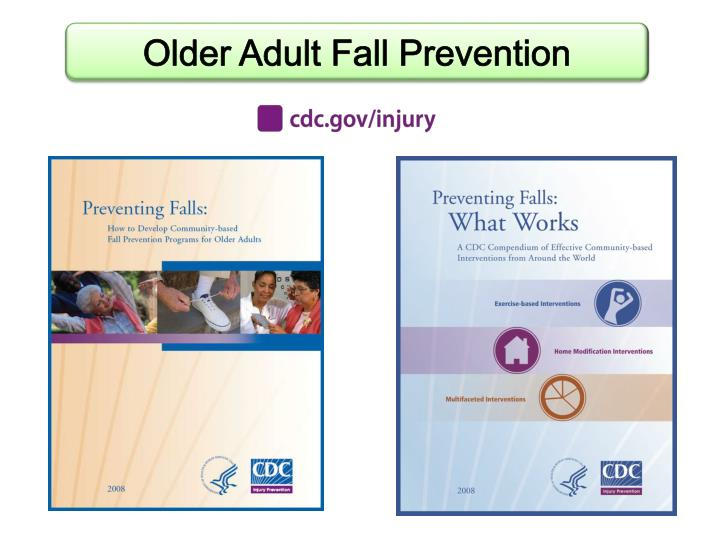 Older Adult Fall Prevention