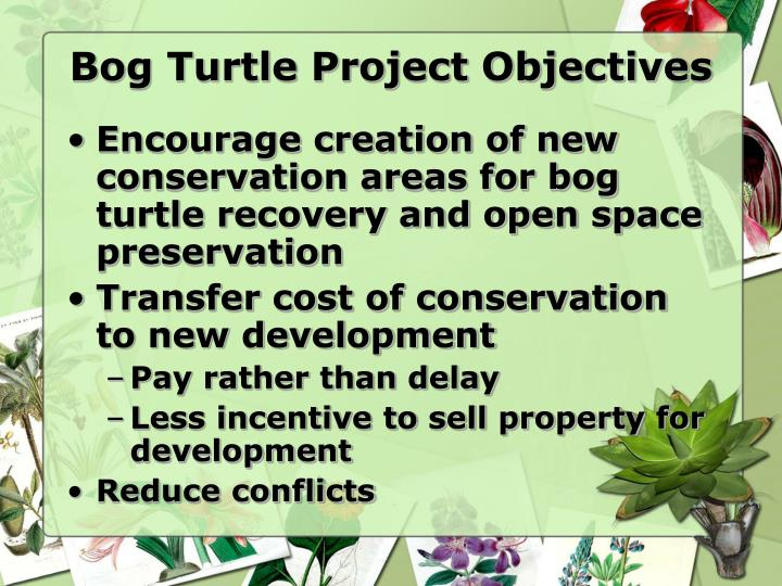 Bog Turtle Project Objectives