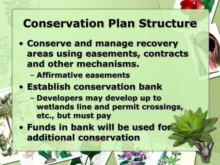 Conservation Plan Structure