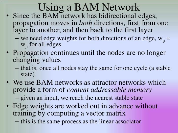 Using a BAM Network
