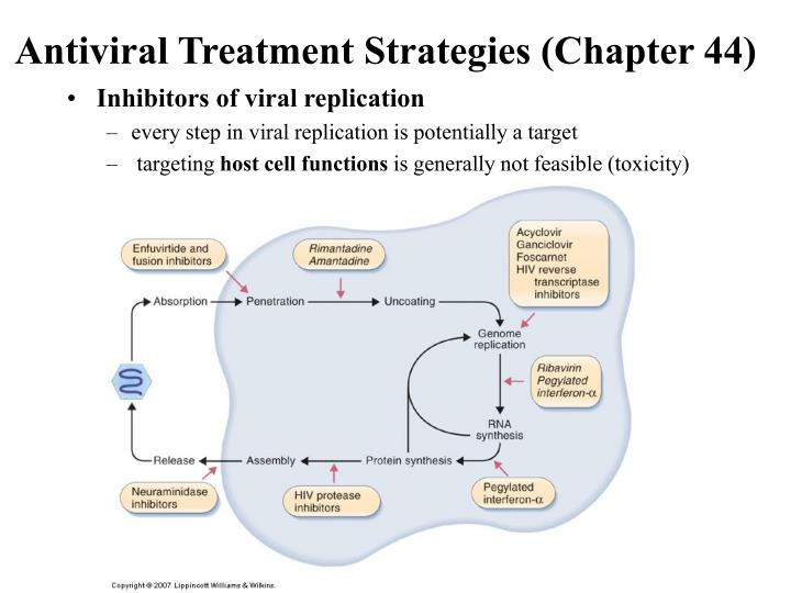 Antiviral Treatment Strategies (Chapter 44)