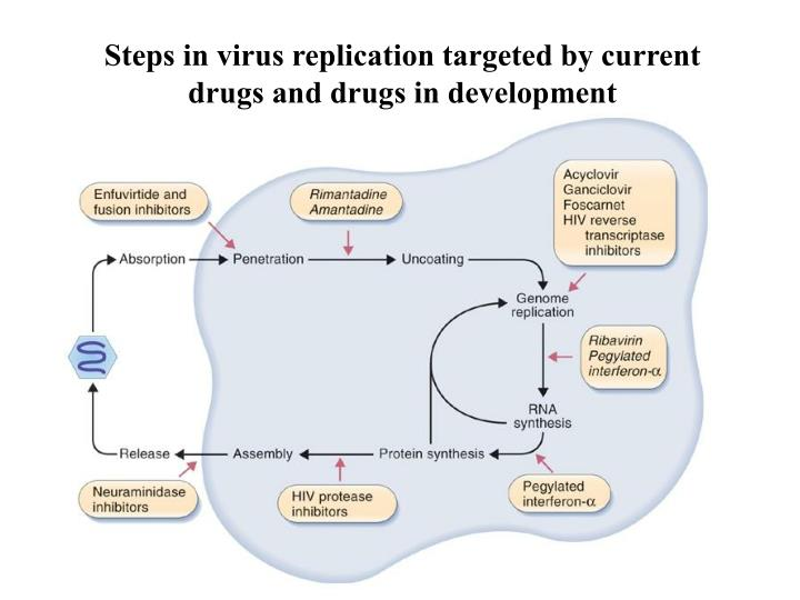 Steps in virus replication targeted by current drugs and drugs in development