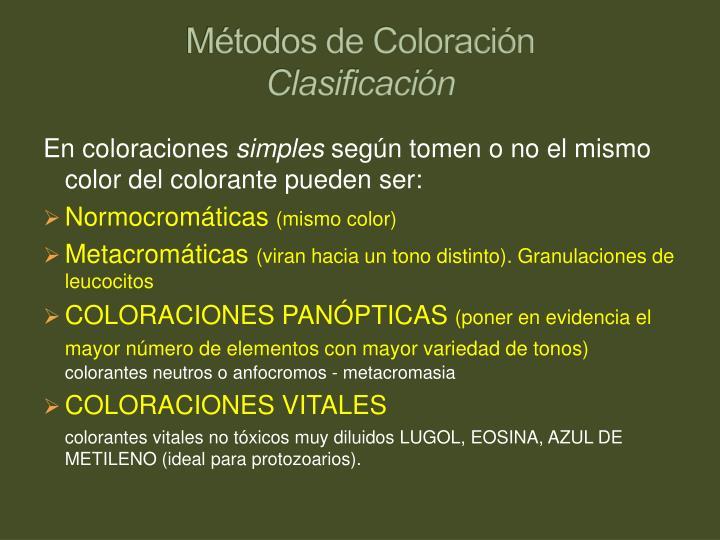 Métodos de Coloración