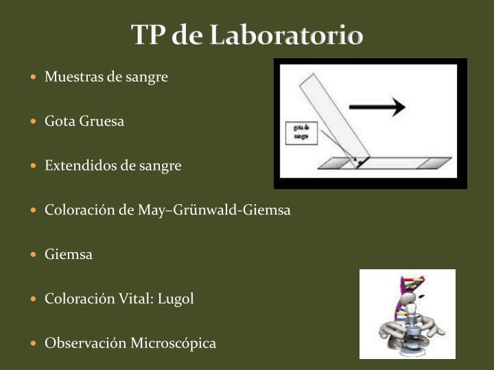 TP de Laboratorio