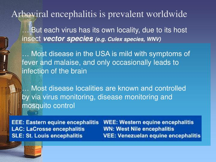 Arboviral encephalitis is prevalent worldwide