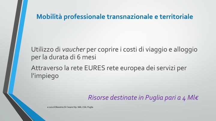 Mobilità professionale transnazionale e territoriale