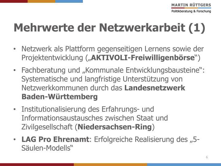 Mehrwerte der Netzwerkarbeit (1)