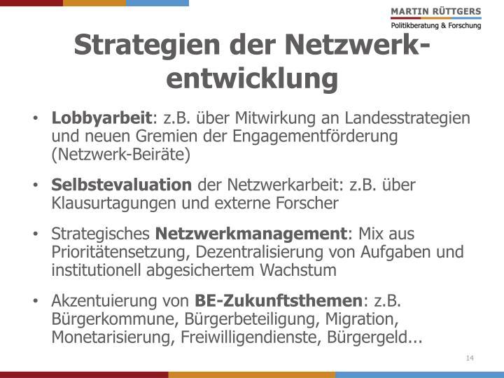 Strategien der Netzwerk-entwicklung