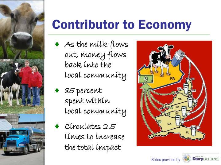 Contributor to Economy