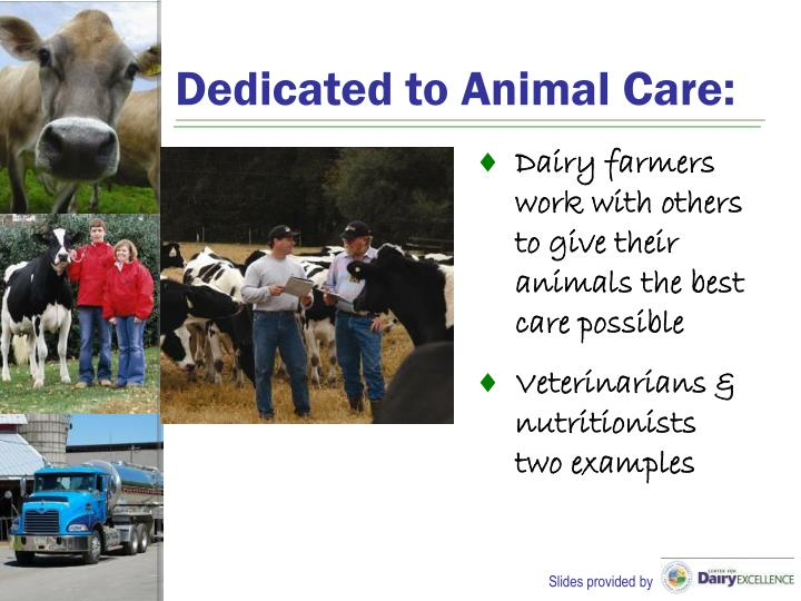 Dedicated to Animal Care: