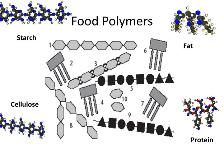Food Polymers