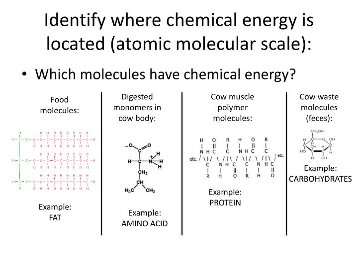 Identify where chemical energy is located (atomic molecular scale):