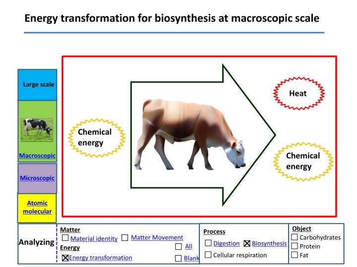 Energy transformation for biosynthesis at macroscopic scale
