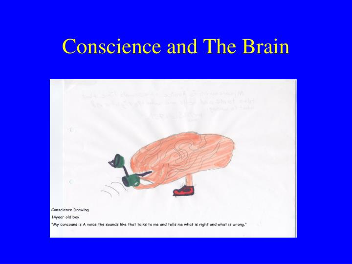 Conscience and The Brain