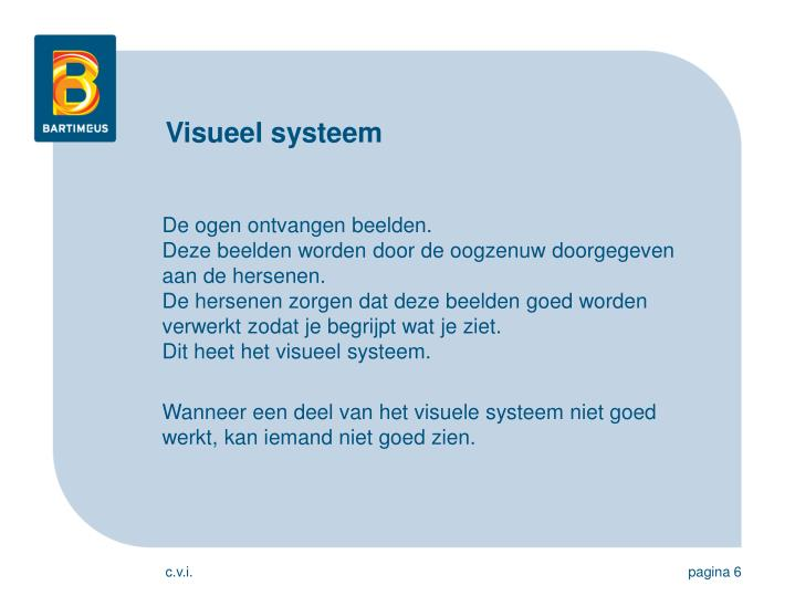 Visueel systeem
