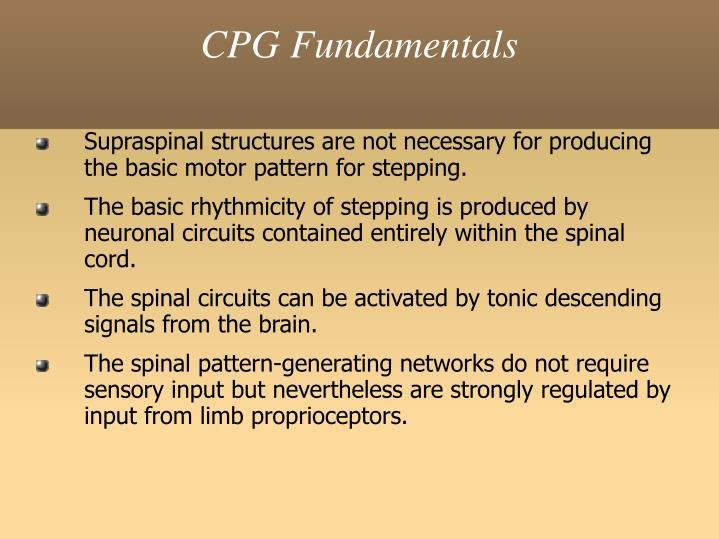 CPG Fundamentals