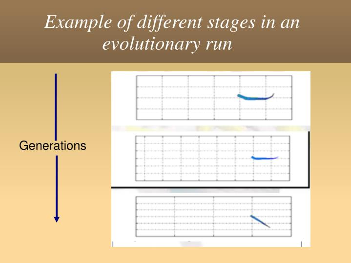 Example of different stages in an evolutionary run