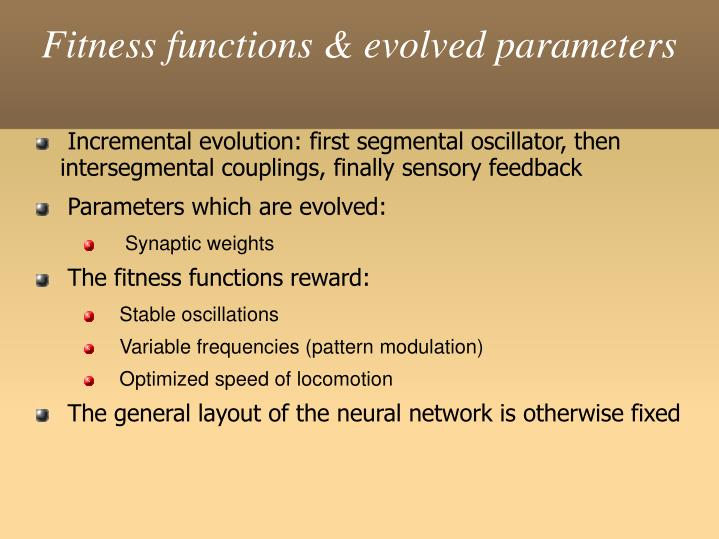 Fitness functions & evolved parameters
