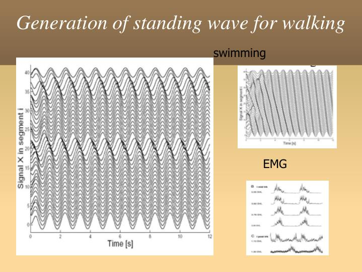 Generation of standing wave for walking