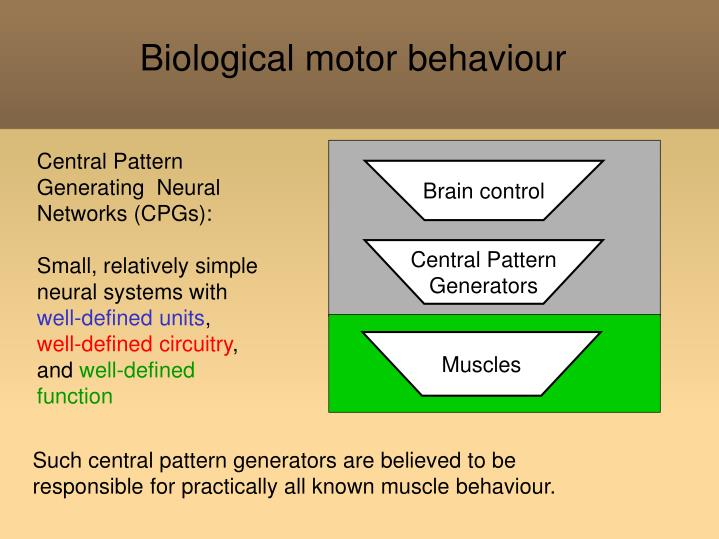 Biological motor behaviour