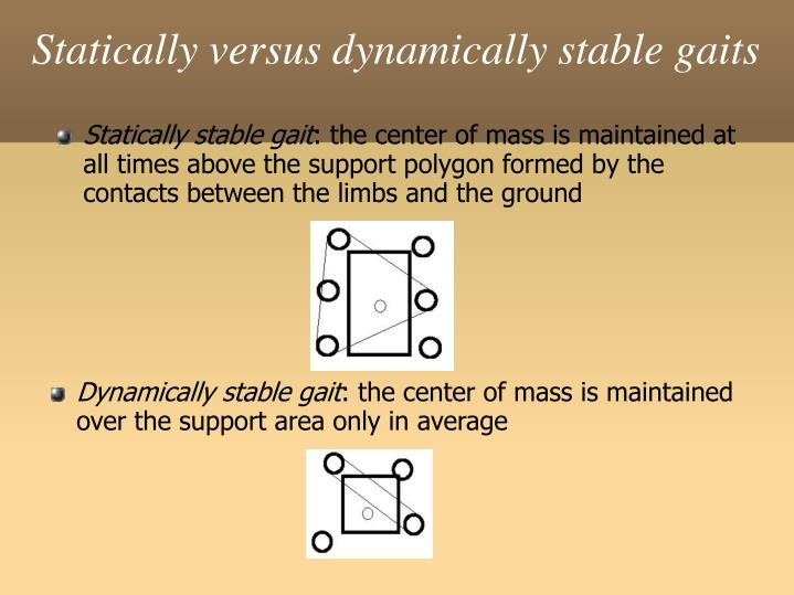 Statically versus dynamically stable gaits