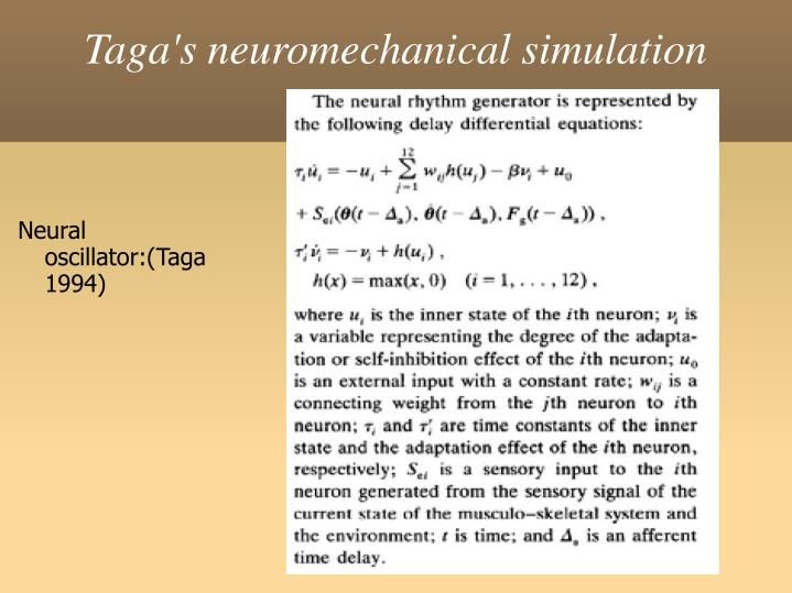 Taga's neuromechanical simulation