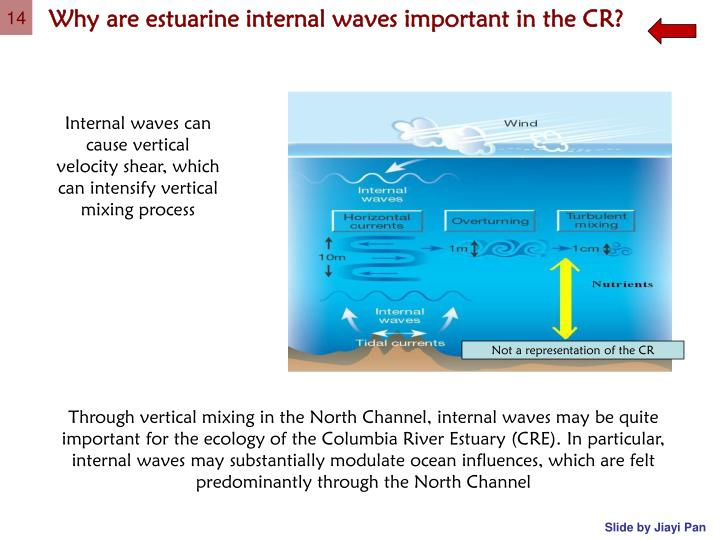 Internal waves in Columbia River estuary (CRE)