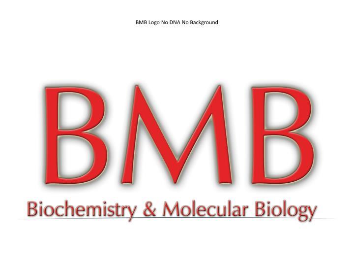 BMB Logo No DNA No Background