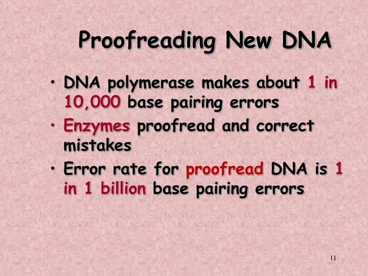 Proofreading New DNA