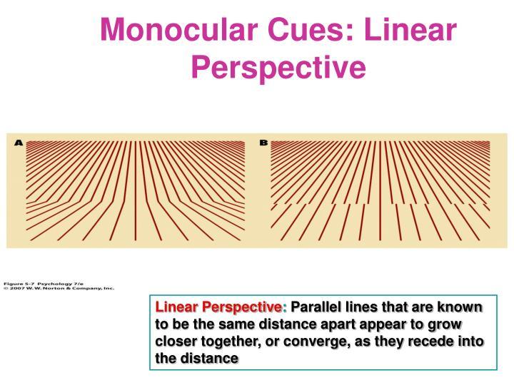 Monocular cues aerial perspective