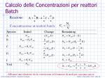 calcolo delle concentrazioni per reattori batch2